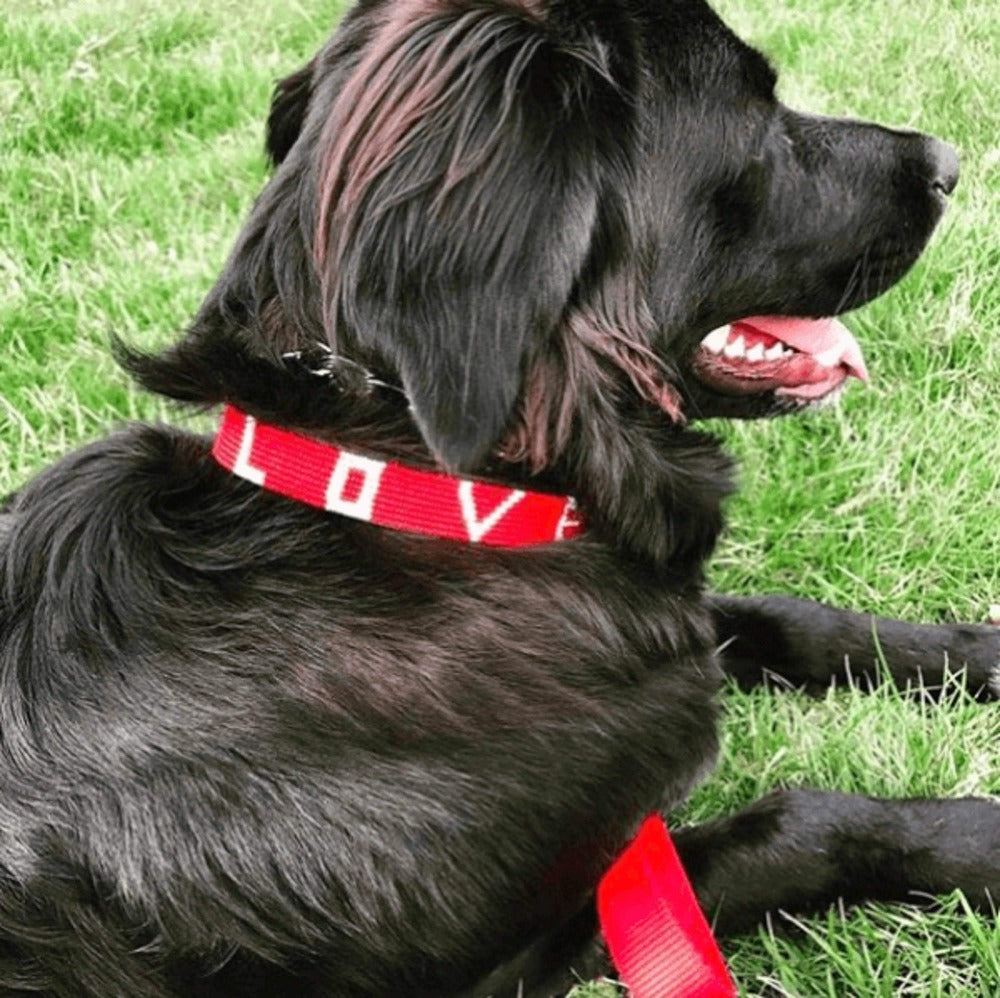 LOVE Pet Collar - Red handmade in Kenya. Glass beaded leather dog collar Love Is Project creates jobs for artisans worldwide.