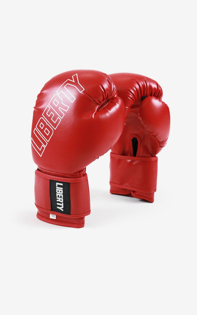 Pro Training 2.0 Boxing Gloves