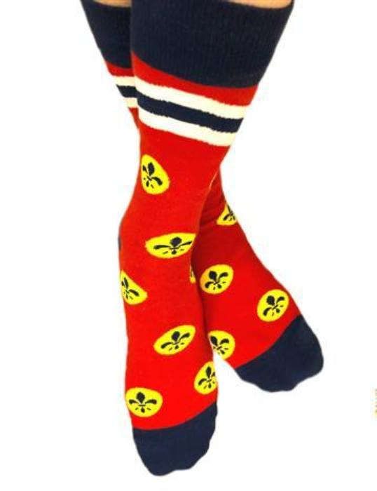 St. Louis Flag Socks