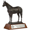 ARC2-B2 Horse Trophy Series