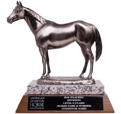 AQHA High Point Level 2 Trophy (R)
