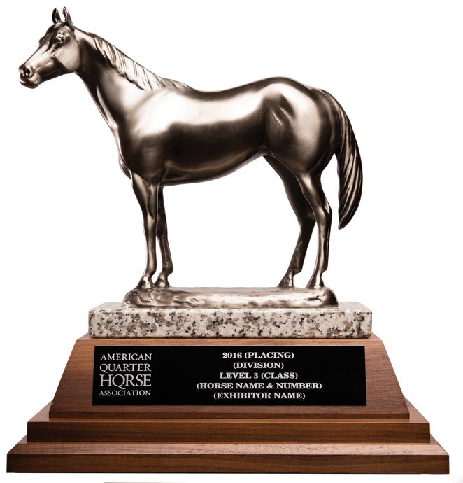 AQHA High Point Level 3 Top 10 Trophy (R)