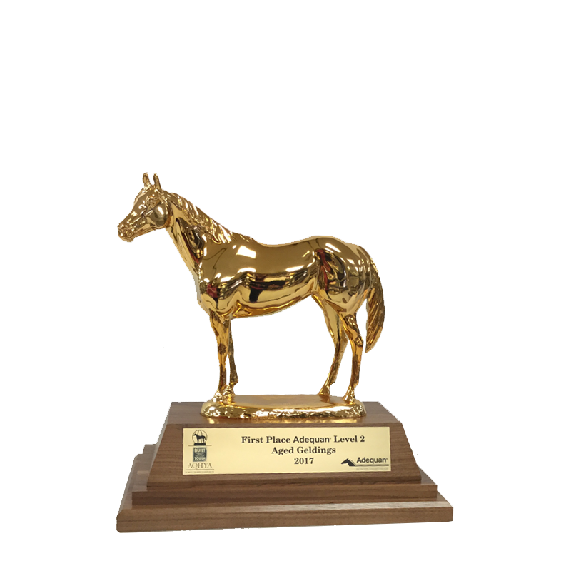 AQHA Level 2 Champion Duplicate Trophy