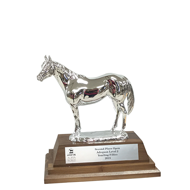 AQHA Level 2 Reserve Champion Duplicate Trophy