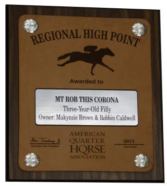 Regional High Point Plaque
