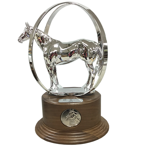 AQHA Reserve World Champion Duplicate Trophy