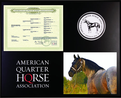 Proud to Own Horse Addict Plaque