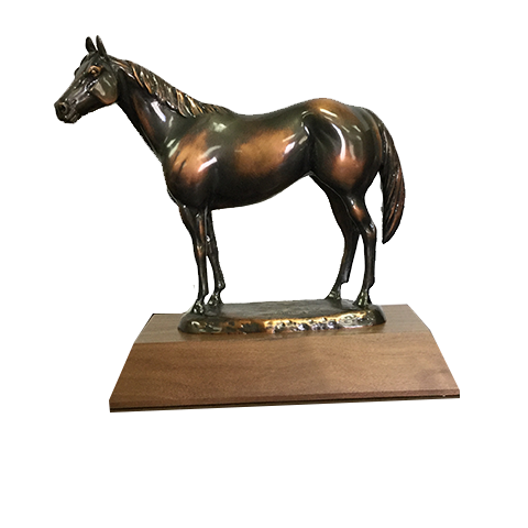 AQHA Level 1 Bronze Trophy
