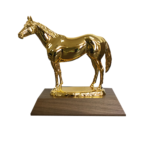 AQHA Level 1 Gold Trophy