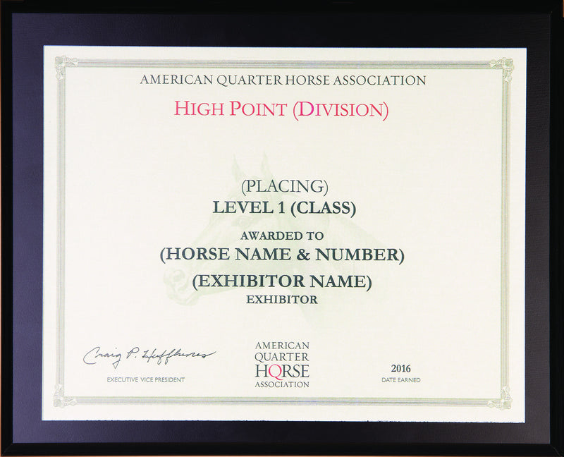 Level 1 Year End High Point Plaque