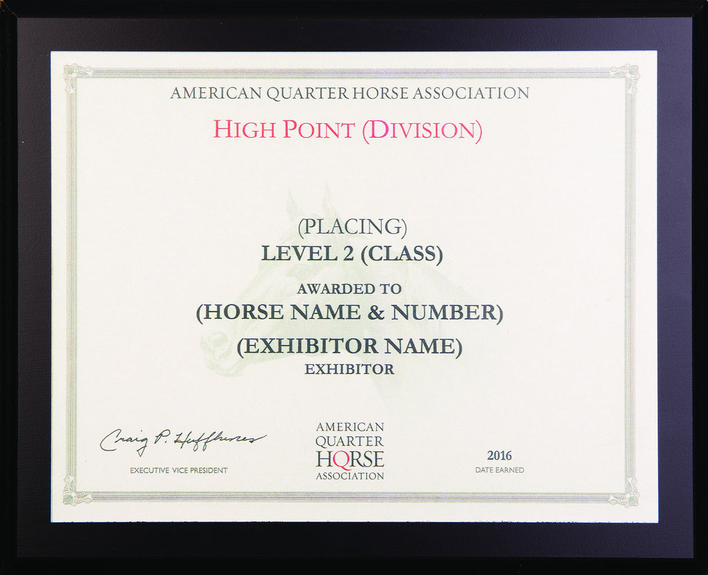 Level 2 Year End High Point Plaque
