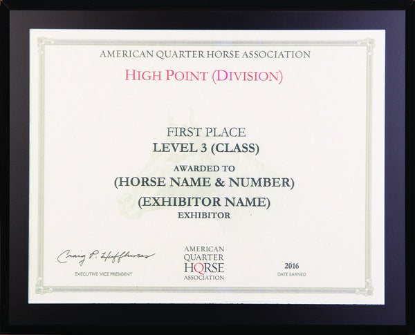 Level 3 Year End High Point Plaque