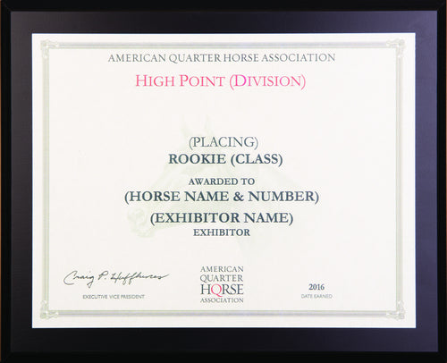 Rookie High Point Year End Plaque