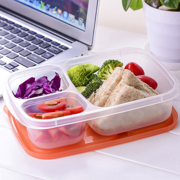plastic-lunch-box-alternatives