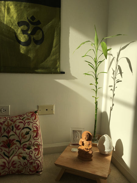 meditation-buddha-bamboo-sunlight-how-to-meditate