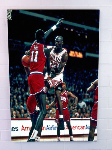 Air Jordan in Flight - 30 x 40