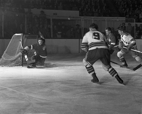 Sawchuk stick save
