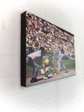 Mr. Tiger Hits One Out - 16x24