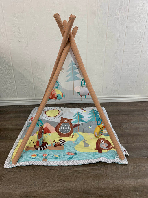 secondhand Skip Hop Camping Cubs Activity Gym