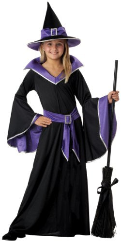 California Costumes Incantasia, The Glamour Witch Costume, Large