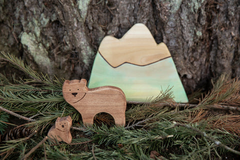 waldorph inspired wooden toys for creative play by fiona and whimsy handmade in portland oregon sitting in front of a douglas fir tree sitting on pine leaves and pinecones in the image