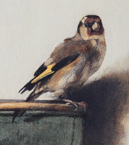 The Goldfinch perching