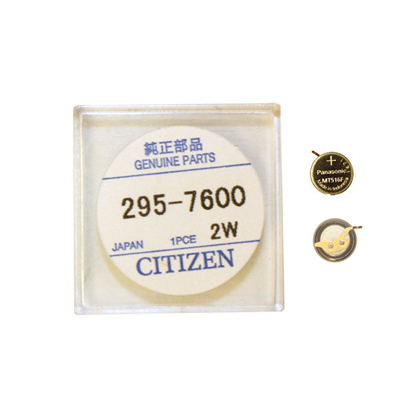 Genuine Citizen Capacitor 295-76