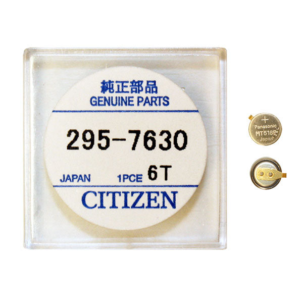 Genuine Citizen Capacitor 295-763