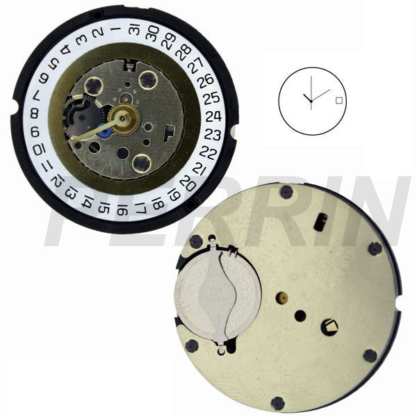 SE310 31 Watch Movement