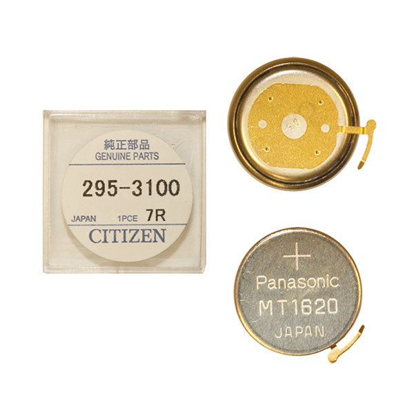 Genuine Citizen Capacitor 295-31