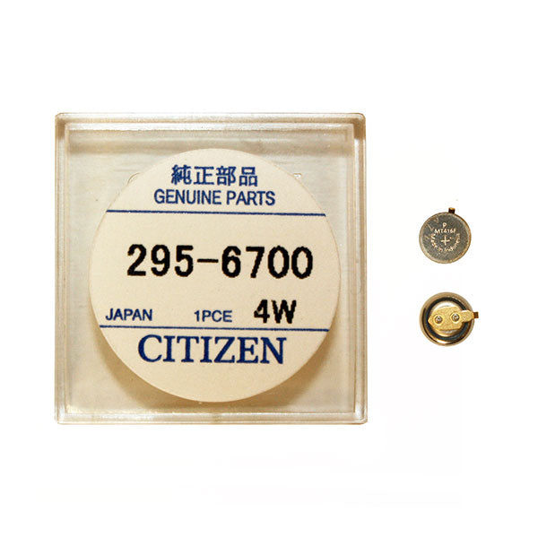 Genuine Citizen Capacitor 295-67
