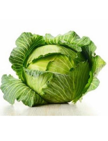 Organic Golden Acres Green Cabbage
