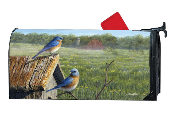 Summer Bluebirds MailWrap