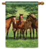 Grazing Time Standard Flag
