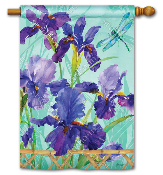 Purple Iris Standard Flag
