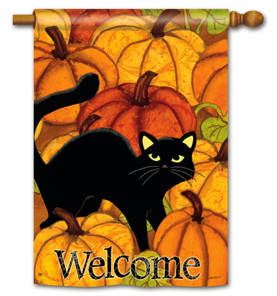 Pumpkin Patch Cat DS Standard Flag