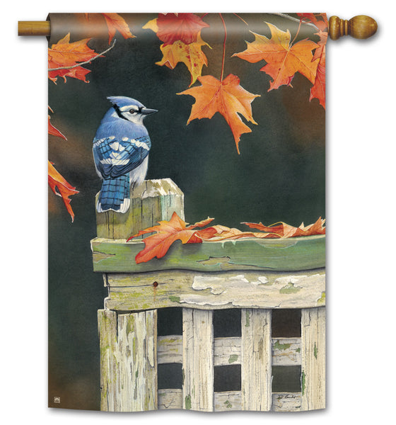 Autumn Blue Jay Standard Flag