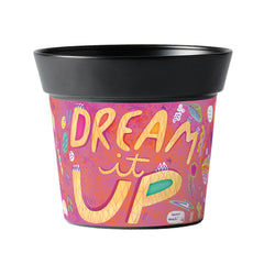 Dream It Up 6
