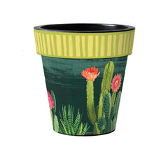Night Cactus - Citron Stripe 15