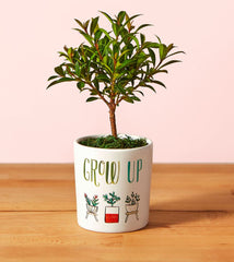 Grow Up Mini Planter