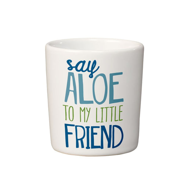 Say Aloe Mini Planter
