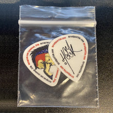 Load image into Gallery viewer, Jason Hook 2019-20 signature guitar pick (set of 2)
