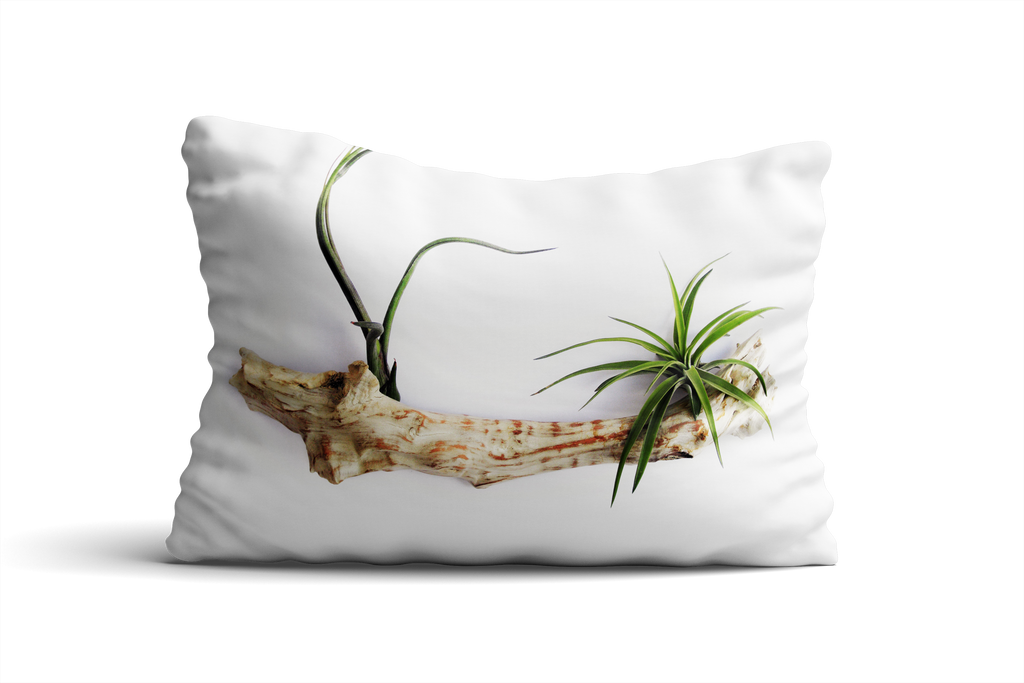 Cape Cod II Pillow Cover