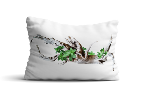 Cape Cod I Pillow Cover