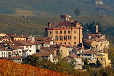 Barolo castle and the town in Piedmont, Italy