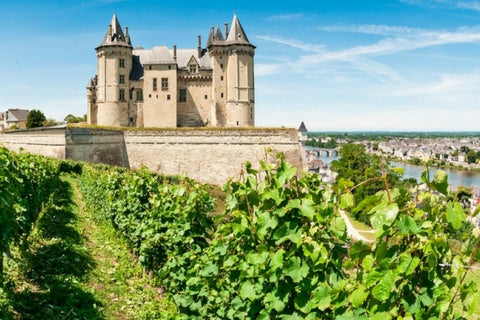 Loire Valley wine, norther France - Chenin Blanc, Muscadet, Sauvignon Blanc, Cabernet Franc