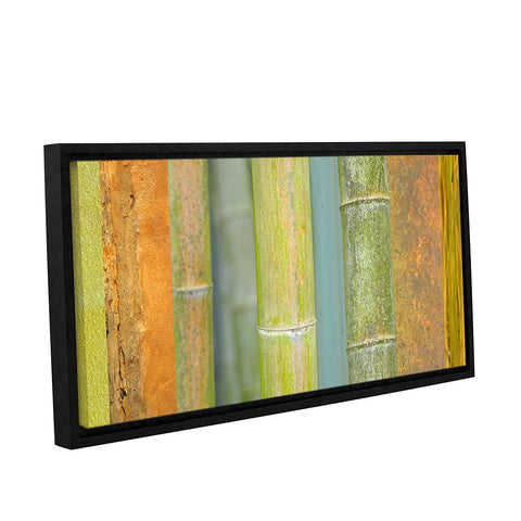 ArtWall Cora Niele Bamboo Gallery Wrapped Floater Framed Canvas 24 by 48 inch Green Orange Give10Back GiveTenBack