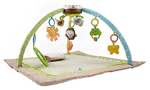 Give10Back-746775119263-Fisher-Price-My-Little-Snugabunny-Ultra-Comfort-Musical-Gym-Give-10-Back-Give-Ten-Back