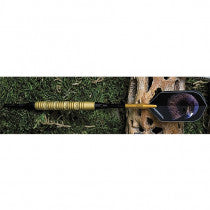 EAGLE GOLD SOFT TIP DART  EGE