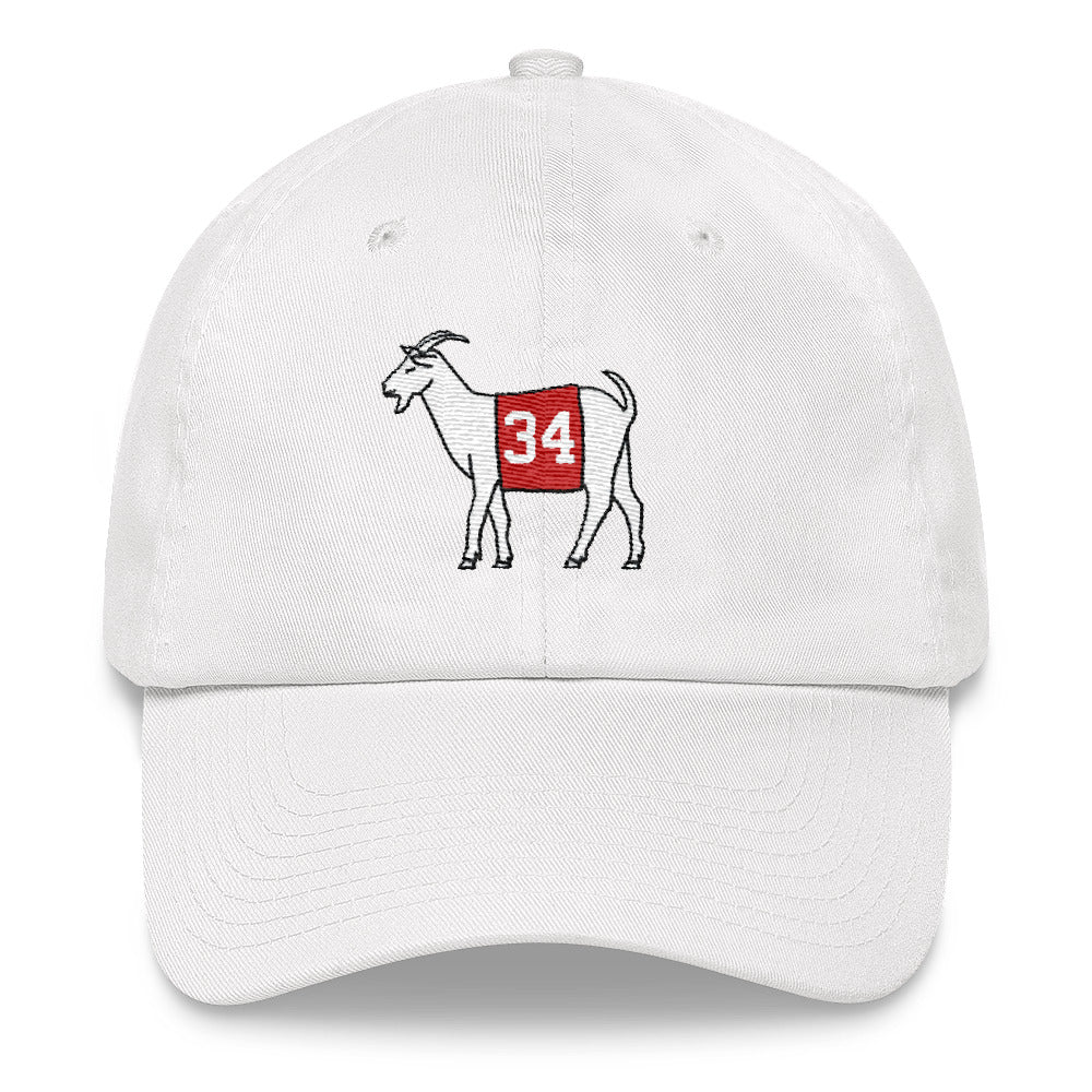 Georgia #34 Dad hat